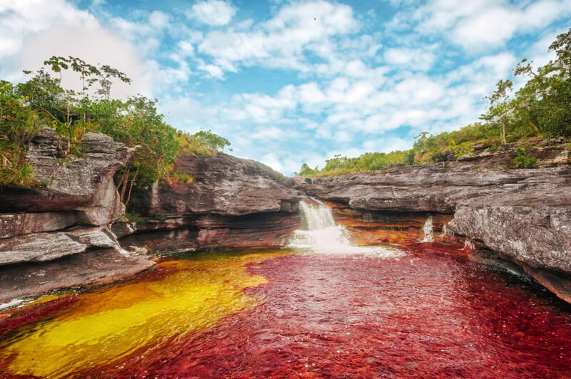 Traveling Cano Cristales in Colombia