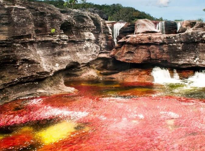 Cano-Cristales-Impresionante-rio-en-Colombia-681x1024