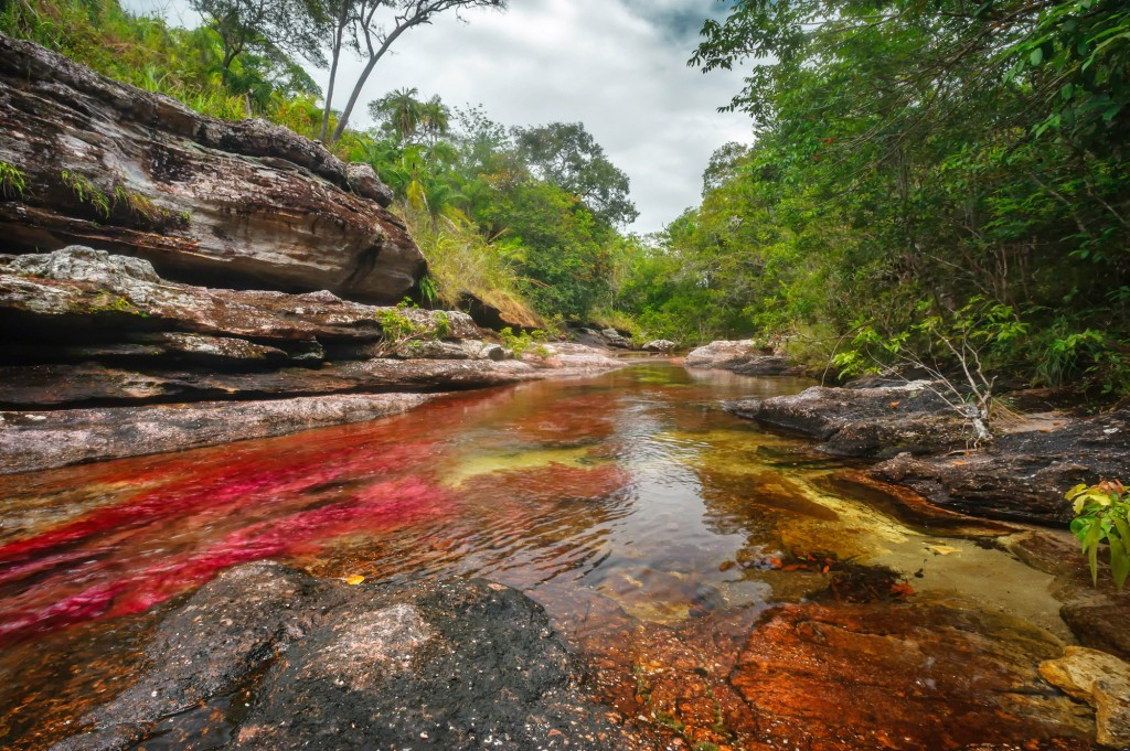 Traveling to Cano cristales - Rainbow river of Colombia - Colombian landscapes.