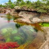 11 photographs showing why Caño Cristales is the coolest place on earth