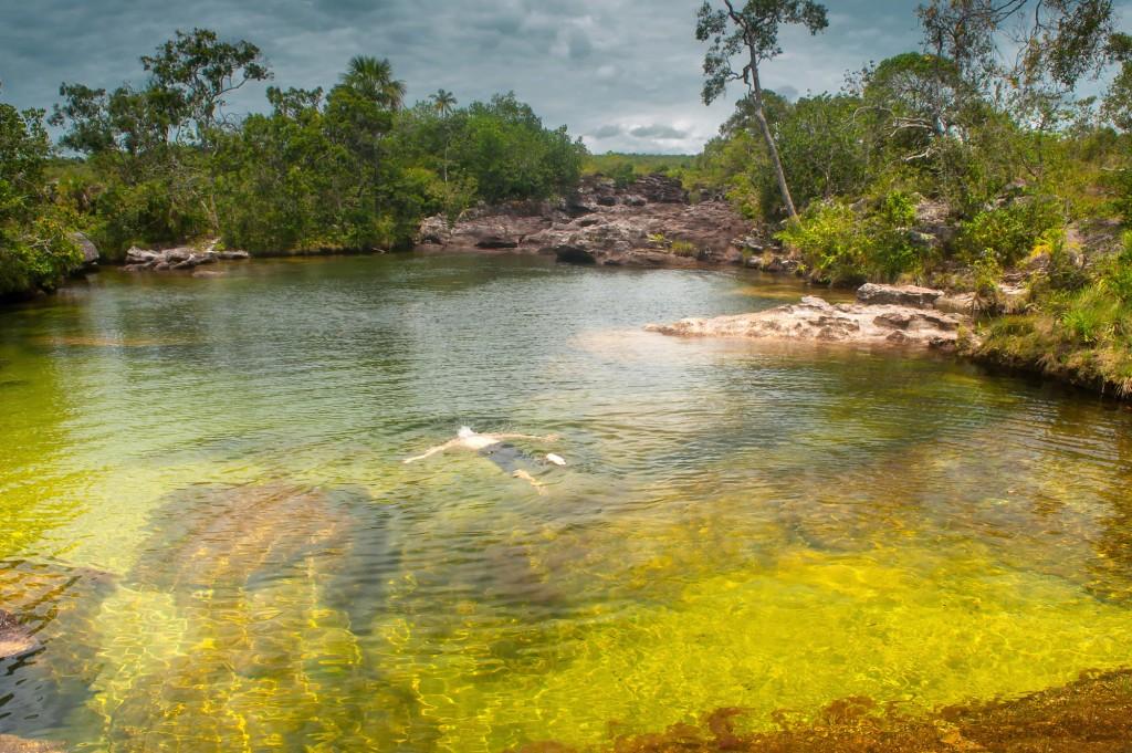 Cano-Cristales-nadar-es-posible-1024x681