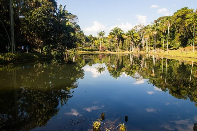 Deserts in Tatacoa, beaches in San Andres, mountains in Cocora or rainforest in the Amazon – just name it and there is a Colombian landscape of it! Let's not forget about Cano Cristales, Colombia's rainbow river.