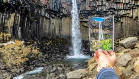 Svartifoss basalt waterfall - roadtrip-iceland