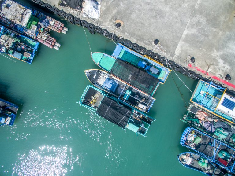 Local ships in a taiwanese port