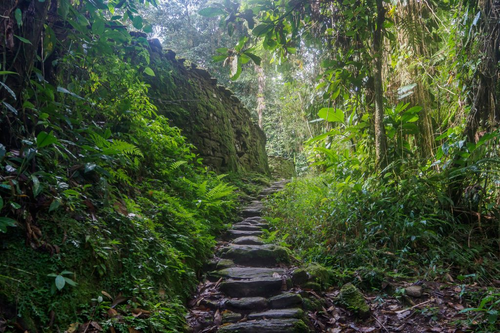 Trekking the Lost City in Colombia