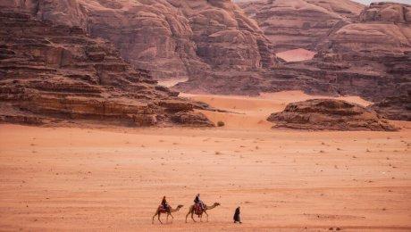 Visiting and camping in Wadi rum