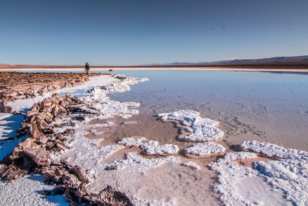 Salt formations at the shore of hidden lagoons of Baltinache and Seven Lagoons in Atacamathe hidden lagoons of
