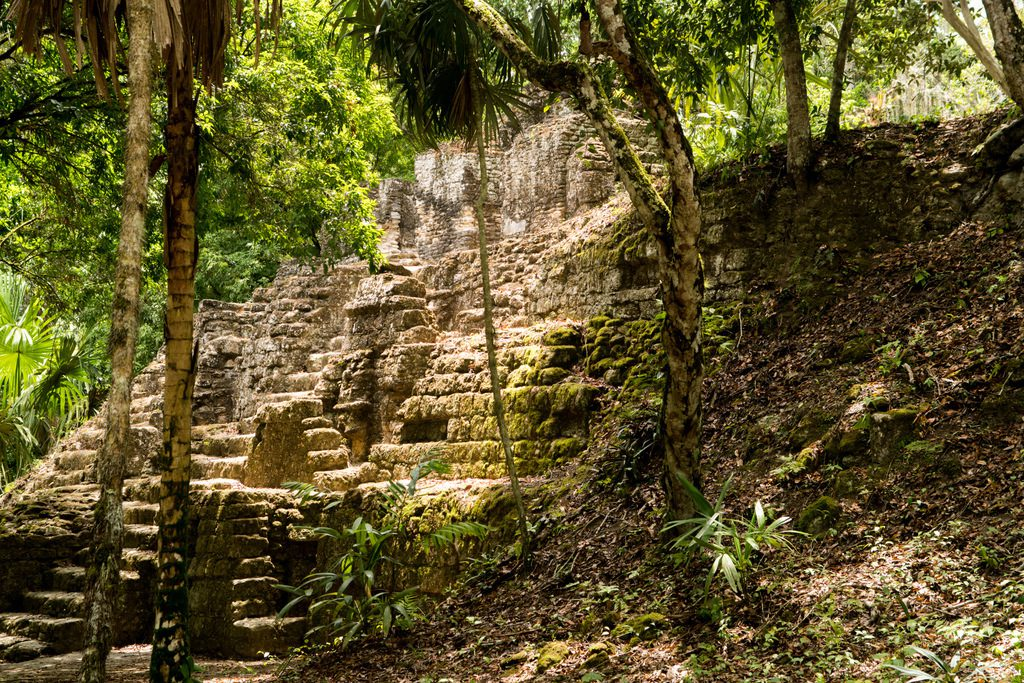 Structures in the mayan city of Tikal