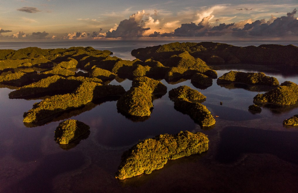 The archipelago of Palau consists of more than 700 islands.