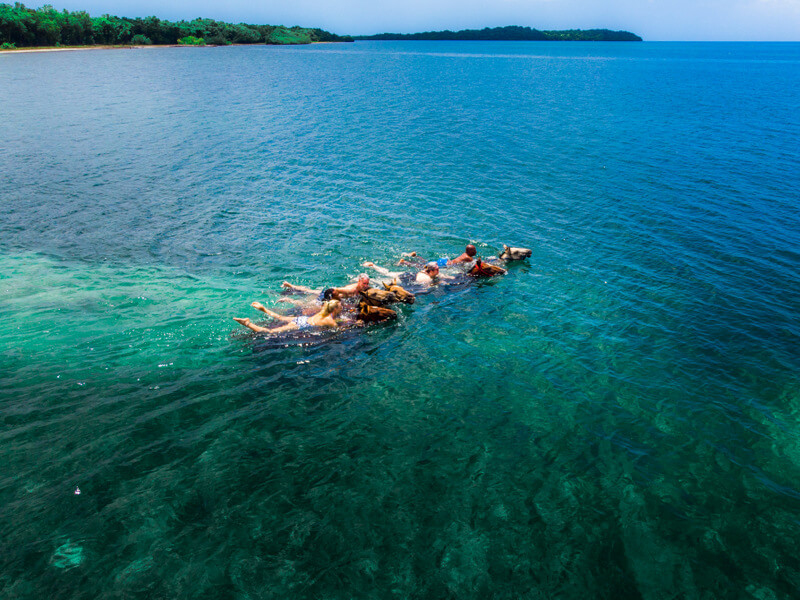 Swimming with horses in Jamaica at Rhodes Hall Plantation