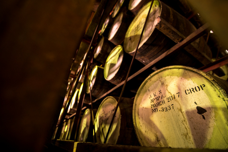 Rum barrels at the Appleton Estate Factory