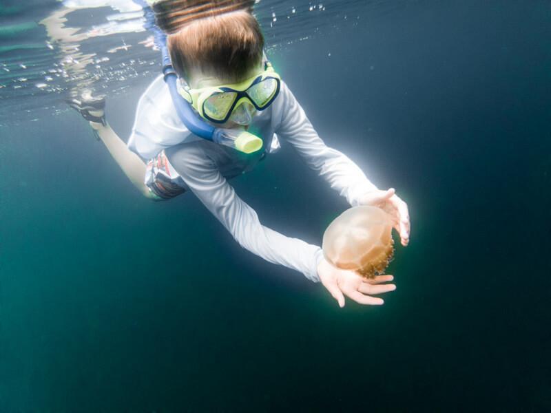Kid snorkeling at the Jellyfish Lake in Palau
