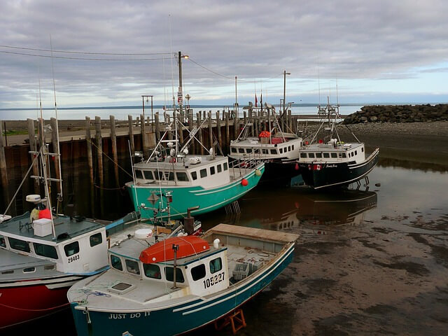 Lobster fishing boats during low tide in Nova Scotia