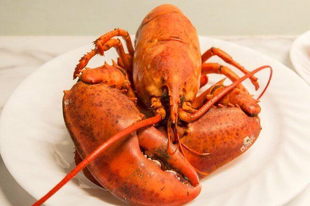 Classic lobster is a must in Nova Scotia