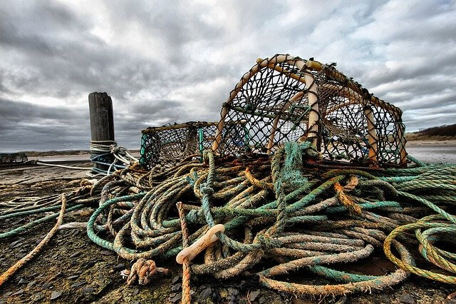 Lobster traps in Nova Scotia's coastline