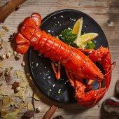 Lobster in Nova Scotia - Travelers Buddy