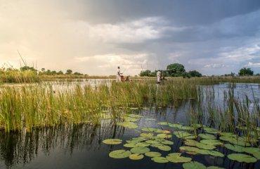 Visit Okavango Delta in Botswana
