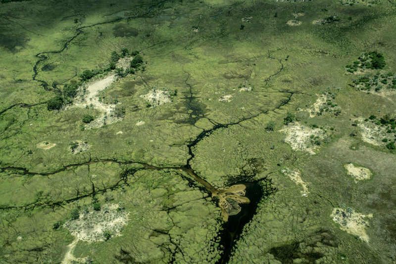 View of the Okavango Delta from the air