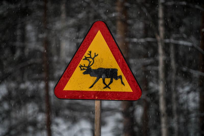Moose crossing signs in Swedish Lapland