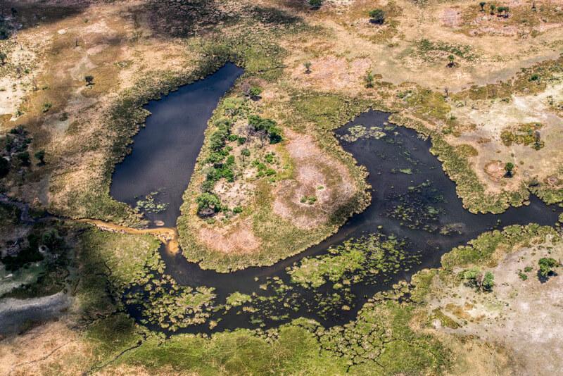 Dry season at the Okavango Delta