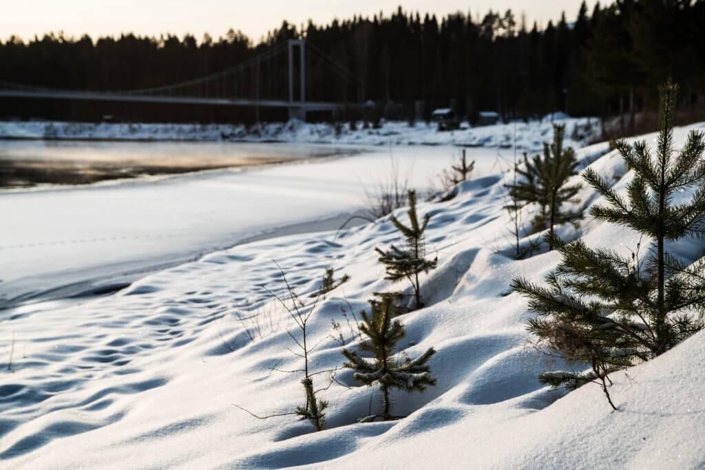 Sunrises in Swedish Lapland