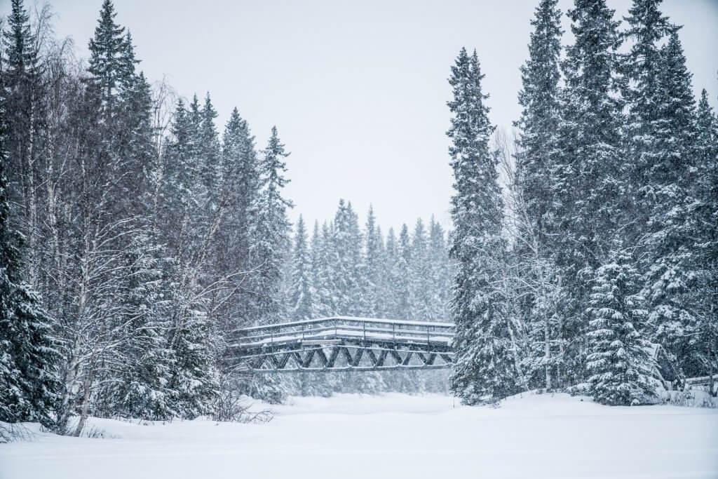 Walking safari on a frozen lake in Lapland