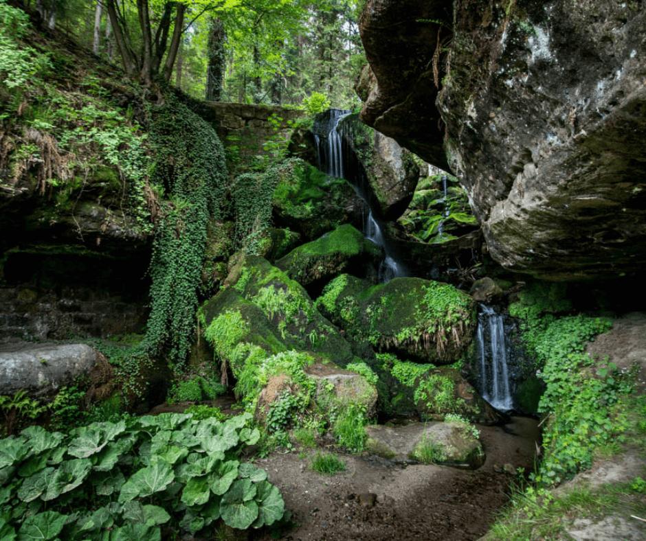 View of the Lichtenhain Waterfall