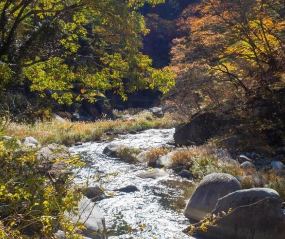scenic spots at mount river Mitake- Hiking routes Mitake