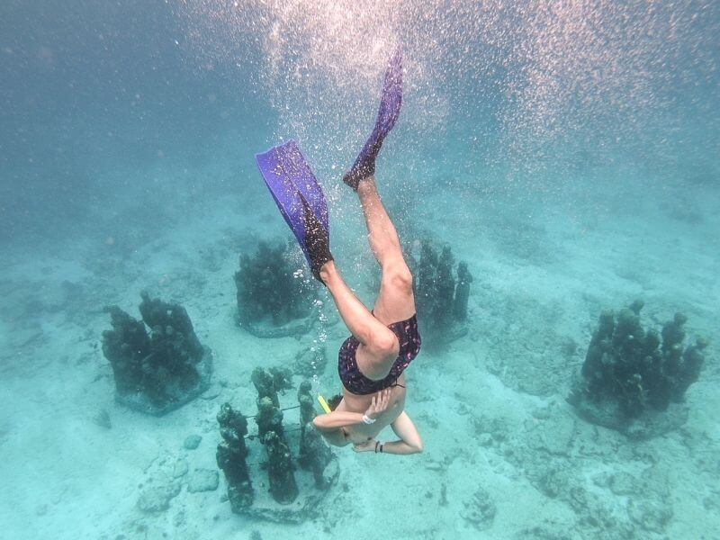 snorkeling at MUSA