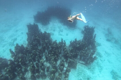 Exploring the Underwater Museum of Art (MUSA) in Mexico